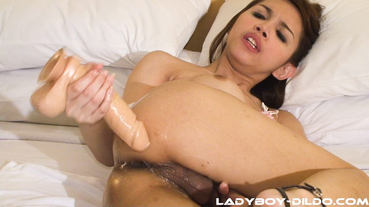 ladyboy anus Oiled shemale anal xxx - Ts oiled asian shemale amatory shiny ladyboy cock  and oiled dildo